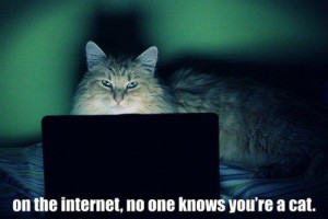 On the Internet no one knows you are a cat