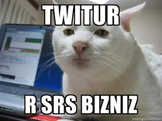 Twitter Is Serious Business LOLCat