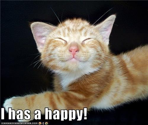 happy lolcat